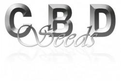 5 UND REG - DAWG BRAINS * DELTA-9 LABS 5 UND REGULARES