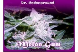 2 UND FEM - MELON GUM * DR UNDERGROUND 2 UND FEM