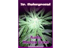 4 UND FEM - AUTO MELON GUM * DR UNDERGROUND FEM 4 UND