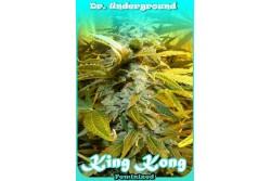 8 UND FEM - KING KONG * DR UNDERGROUND  8 UND FEM