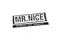 15 UND REG - NHS (NL5/HAZE X SKUNK) * MR NICE LIMITED EDITION 15 UND REG