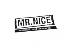 15 UND REG - SKUNK HAZE * MR NICE LIMITED EDITION 15 UND REG