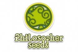 4 UND FEM - HAPPY MIX* PHILOSOPHER SEEDS 4 UND FEM