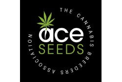 10 UND REG - GREEN HAZE REGULAR * ACE SEEDS 10 UND REGULARES