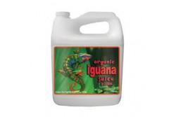 IGUANA JUICE GROW 5L